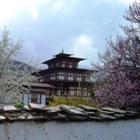 Фото Бутан