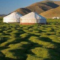 Фото Монголия