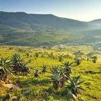 Фото Свазиленд