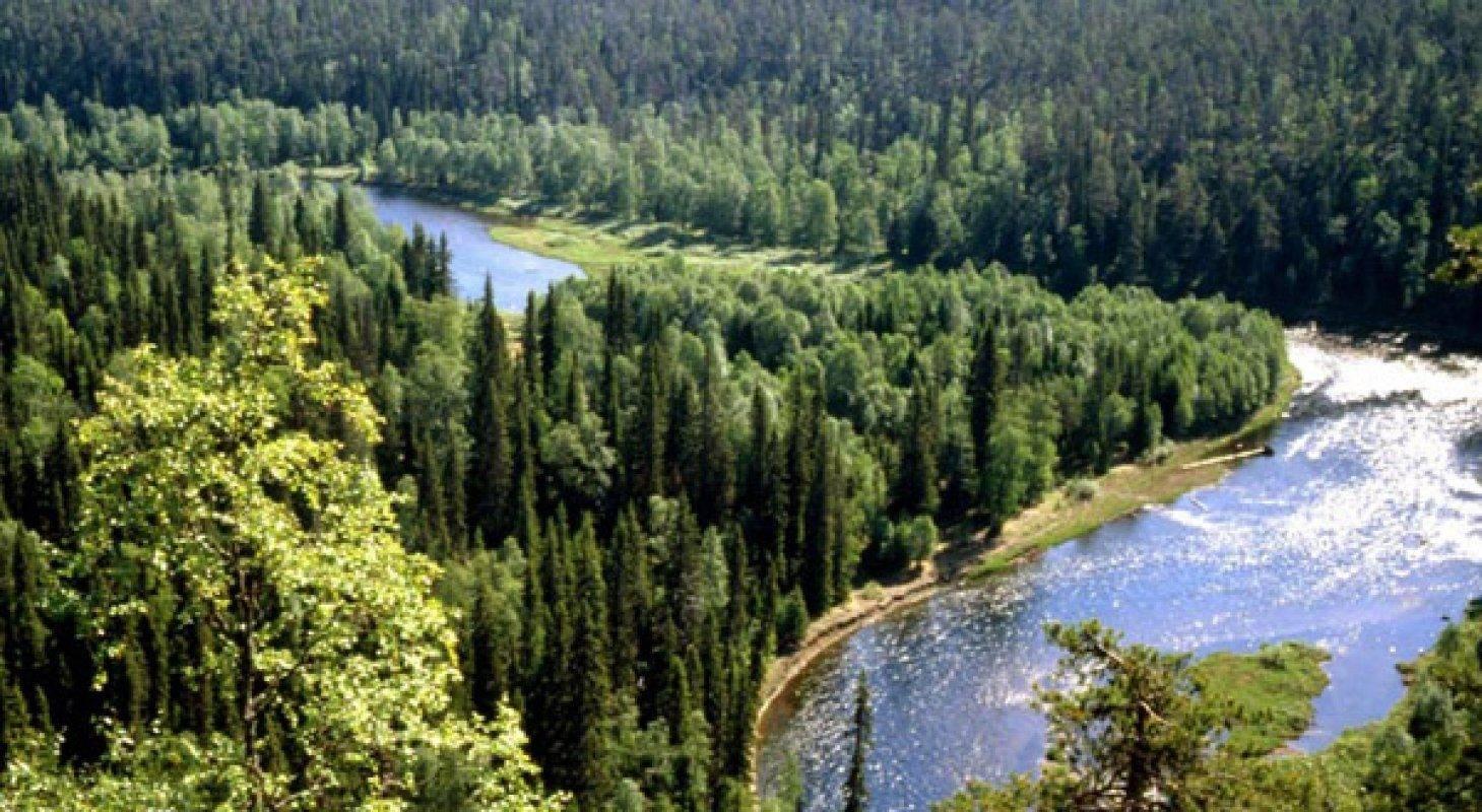 Гидрометцентр прогноз погоды спасск-рязанский