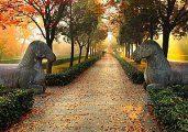 Мавзолей Сяолин (Ming Xiaoling)